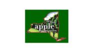 new-york-apples